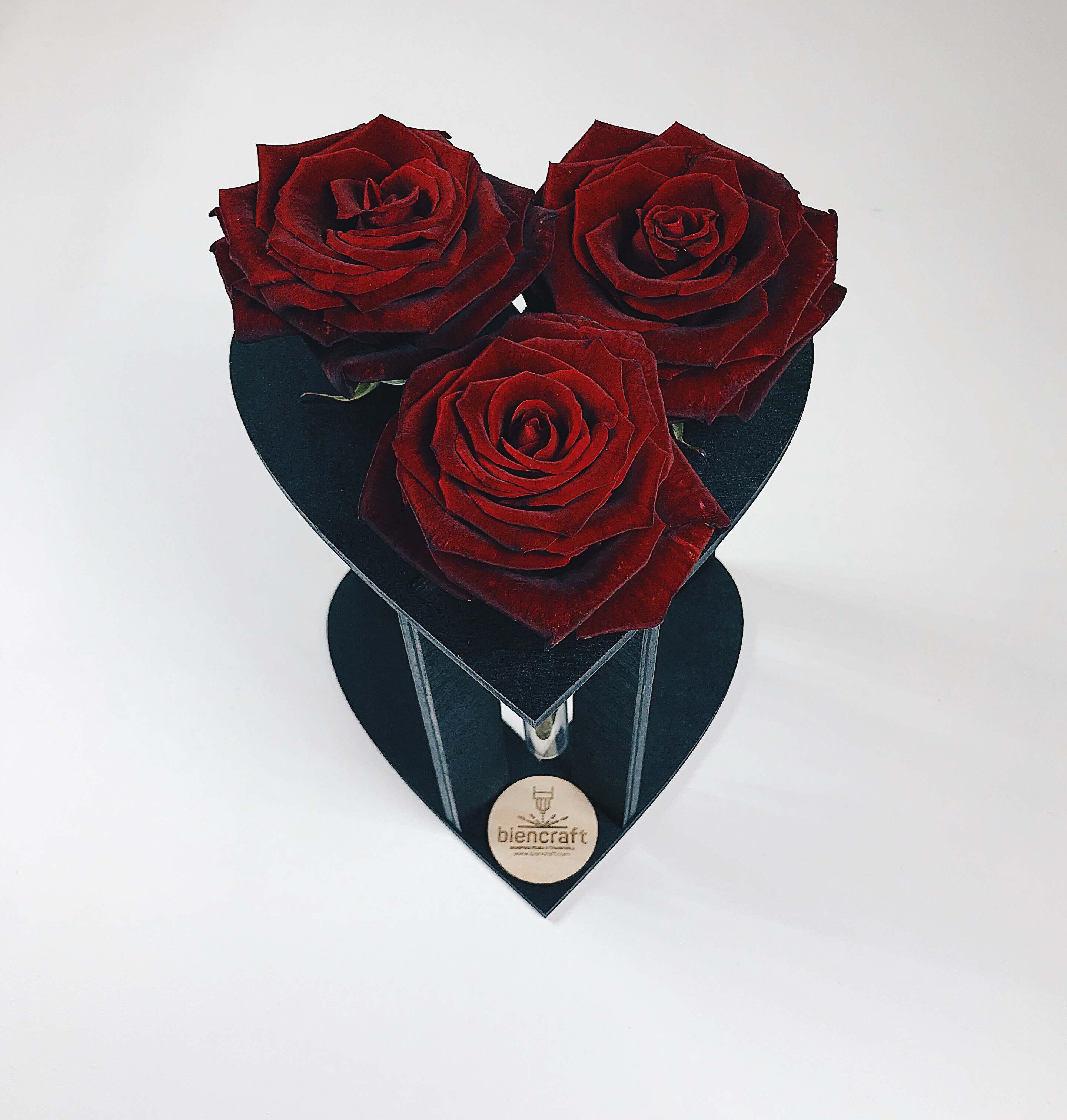 biencraft-стойка-под-розы